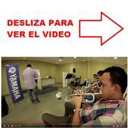 TUTORIAL VIDEO CLINICA VIENTOS YAMAHA